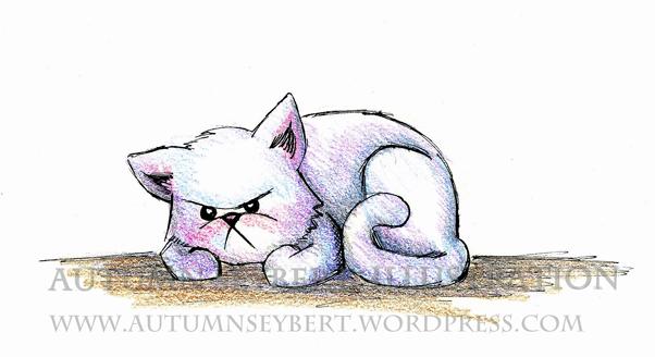 Crabby-Cat