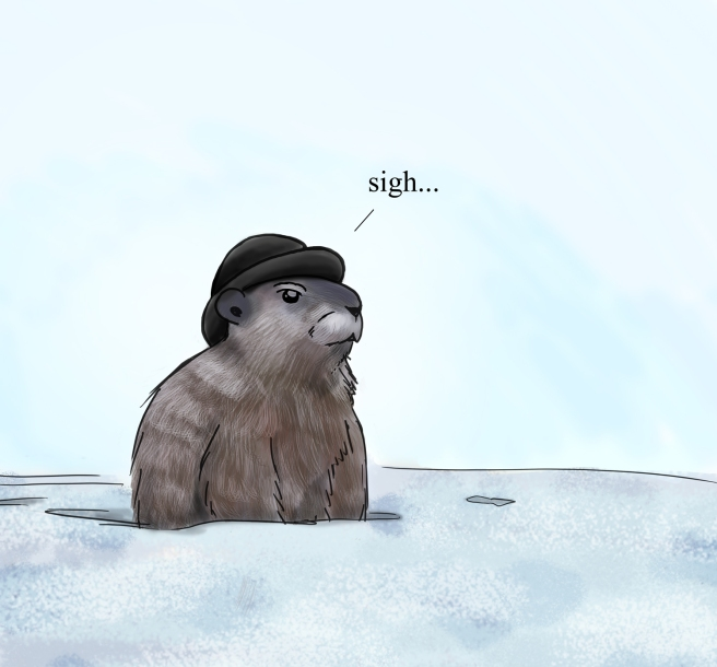 Even Groundhog was tired of snow.