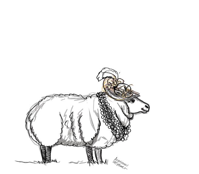 sheep-duchess