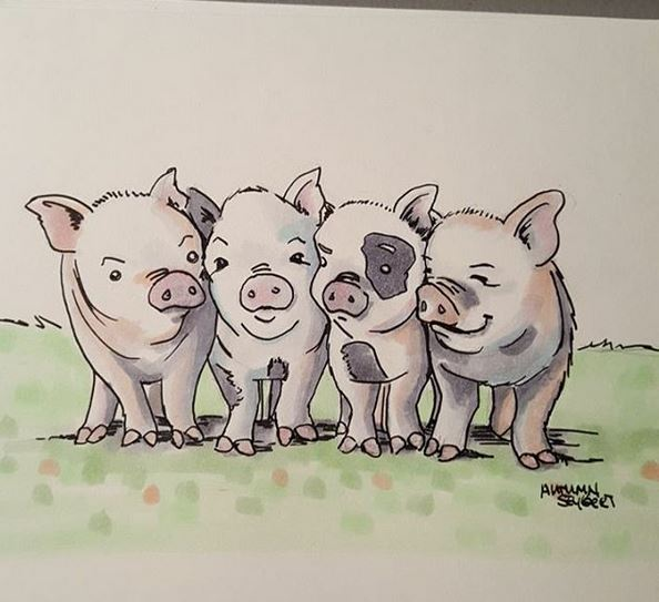 pushypiggies